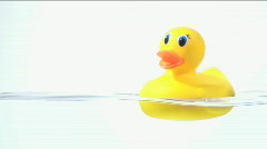 Rubber ducky in water - HD  Stock Footage