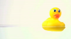 Rubber ducky with copy space - HD  Stock Footage