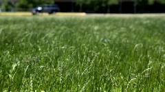 Grass field cars Stock Footage