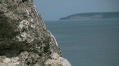 Eroded limestone stack on the coast on the island Gotland in Sweden Stock Footage