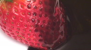 Stock Video Footage of Chocolate covered strawberry macro - HD