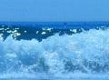 High Speed Camera : Ocean Wave 027 Loop Footage