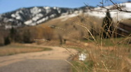 Out of focus mountain biker Stock Footage
