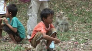 Stock Video Footage of Cambodian children feeding monkeys