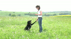 HD1080i Young brunette woman and black dog playing outdoor on green meadow Stock Footage