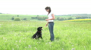 Stock Video Footage of HD1080i Young brunette woman and black dog playing outdoor on green meadow
