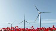 Wind turbine on red poppy field Stock Footage