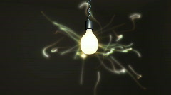 Insect flying around lamp  Stock Footage