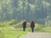 Two People Walking Path Stock Footage