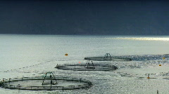 Commercial salmon farm - stock footage
