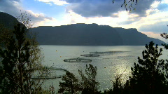 Commercial salmon farm Stock Footage