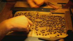 manual coffee bean selection close - stock footage