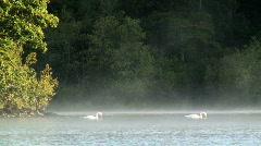 Derwent water Stock Footage