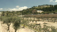 jerusalem Gethsemane pan 3 - stock footage