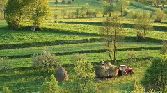 Gathering hay Romania Stock Footage