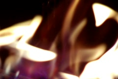 Flames in a Firepit Stock Footage