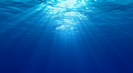 UNDERWATER Stock Footage