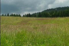 Countryside in Styria 6 - stock footage