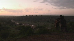 Sunset national park africa Stock Footage