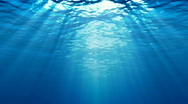 Stock Video Footage of UNDERWATER  BACKGROUND HD