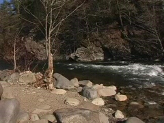 Little River looking downstream-H.264  - stock footage