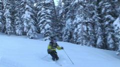 Skiing Fresh Snow Stock Footage