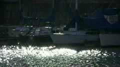 Sailboats in glittering water Stock Footage