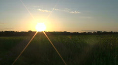 Sun shining over green field Stock Footage
