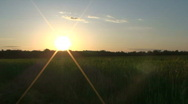 Sun shining over green field Stock Footage