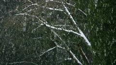 snow pan down - stock footage