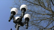 Stock Video Footage of Street Lamp And Trees