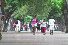 prado people walking 2 - stock footage