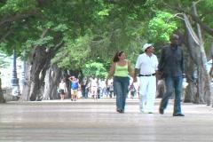 prado people walking - stock footage