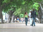 Stock Video Footage of prado people walking