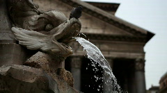 Pantheon in Rome,  Piazza della Rotonda Fountain and Pigeon Stock Footage