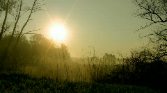 Morning mist - stock footage