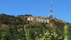 Hollywood Sign, Wide with Foreground - stock footage