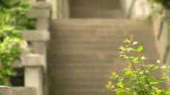 Ladder to sea of Vorontsovsky park in Crimea. Stock Footage