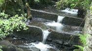 Waterfall jumper Stock Footage