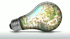 Renewable energy light bulb flowers - HD Stock Footage