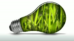 Renewable energy light bulb grass animated - HD Stock Footage