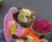 Selling flowers Stock Footage