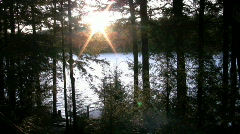 Sunset through trees over lake and dock  Stock Footage