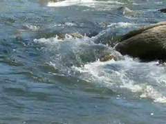 TRUCKEE RIVER  Stock Footage
