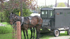 Amish/mennonite horse and buggy Stock Footage