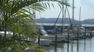 Stock Video Footage of Boat Marina