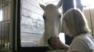Woman pets white horse in stall Stock Footage