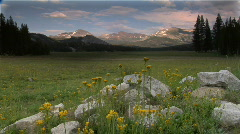 Tuolumne Meadows in Yosemite  National Park Stock Footage