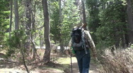 Mountain hiker, hiking Stock Footage