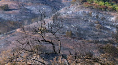 hill scorched from fire - stock footage